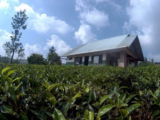 Resort At Vagamon