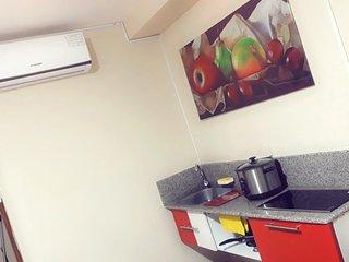 Dpto_Studio (Independiente con Cocina)