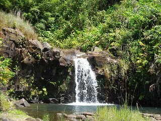 Heavenly Enchanting Waterfall in Hilo