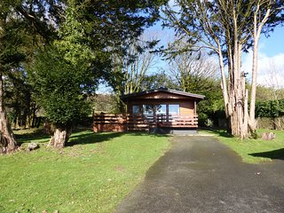 Birch Lodge 23 with Hot Tub, Newton Stewart