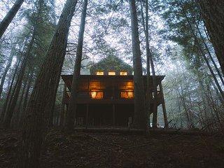 Romance In The Ravine | Hocking Hills