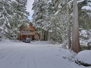 NEW LISTING! Family-friendly cabin w/ Ping-Pong & a pool table - walk to slopes