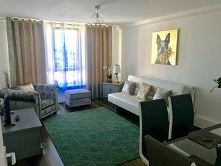 Beautiful 1bedroom apartment in Brixton, London