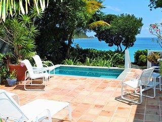 Spectacular Luxury Beach Villa in Klein Bay.  Just steps to the Beach!