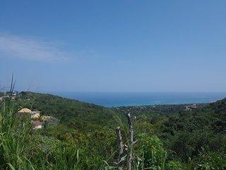 MC's Ocean View