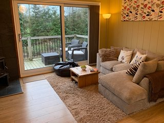 WILLOW RIVER LODGE, woodburner, WiFi, charming riverside lodge near Clun, Ref