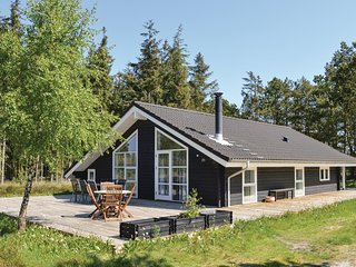 Beautiful home in Albaek w/ Sauna, WiFi and 3 Bedrooms (E8108)