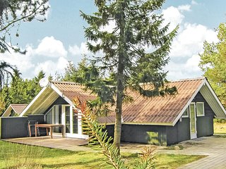 Stunning home in Fjerritslev w/ WiFi and 2 Bedrooms (B70741)
