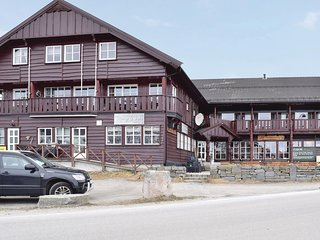 Stunning home in Hovden I Setesdal w/ Sauna and 3 Bedrooms (N35071)