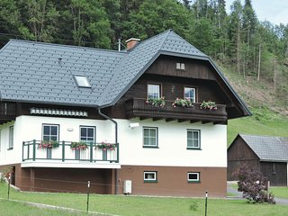 Stunning home in Aigen/Ennstal w/ WiFi and 2 Bedrooms