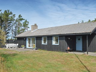 Beautiful home in Skagen w/ WiFi and 3 Bedrooms (A01119)