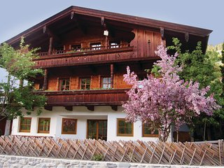 Nice home in Alpbach w/ WiFi and 2 Bedrooms