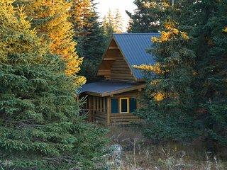 Bear Paw Adventure - Wise Old Hunter Lodge