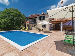 Awesome home in Svetvincenat w/ WiFi and 3 Bedrooms (CIC482)