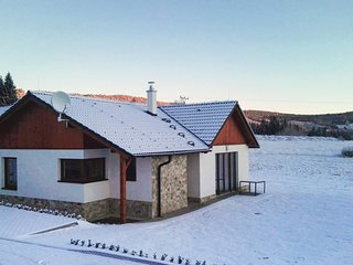 Stunning home in Lipno nad Vltavou w/ WiFi and 3 Bedrooms (TBB830)