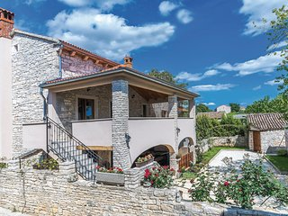 Amazing home in Svetvincenat w/ WiFi and 3 Bedrooms (CIC303)