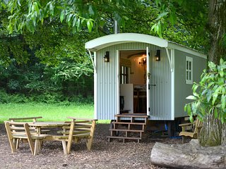 The Hut, traditional shepherds hut (sleeps 2)