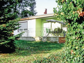 Awesome home in Harzgerode OT Dankerod w/ WiFi and 1 Bedrooms