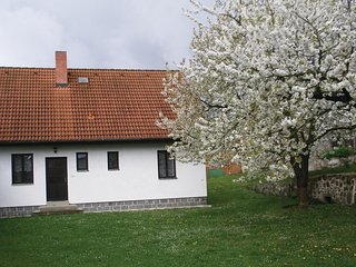 Awesome home in Nalzovice w/ 2 Bedrooms and Outdoor swimming pool