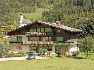 Austria holiday rental in Austrian Alps, Flachau