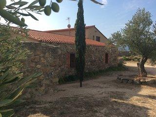 Gite Pyrenees Orientales, pleine nature et production huile d'olives artisanales