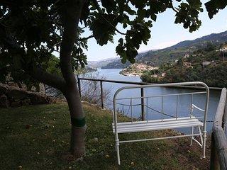 Casa Vista Alegre - Douro