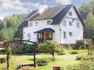 Awesome home in Dziemiany w/ 4 Bedrooms