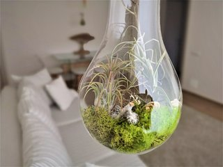 Light Globe Apartment