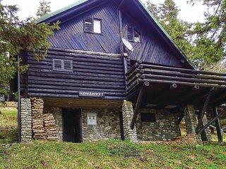 Amazing home in Smartno pri Sl.Gradcu w/ 2 Bedrooms and Sauna (SKR113)