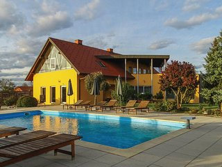 Awesome home in Krizevci pri Ljutomeru w/ Sauna, WiFi and Outdoor swimming pool