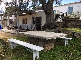 Palau  Porto Pollo Nord Sardegna villetta mimosa