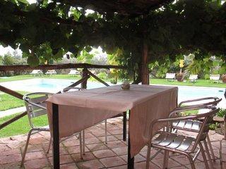 Apartament in Castiglione del Lago ID 3677