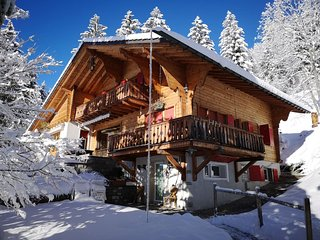 Stunning and very cozy chalet at a perfect spot!