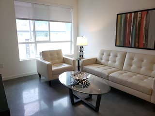 WA 212 - Bright, Cozy and Clean 1 BR Upscale Suite in DTLA