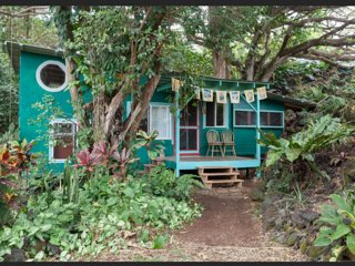 The Sweet Spot Stay: Magical Grotto House Under Giant Trees-Walk to the Beach