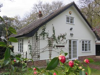 Wood Lodge, Great Braxted - Self-Catering with Hot Tub