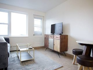 Impeccably Furnished Downtown Flat