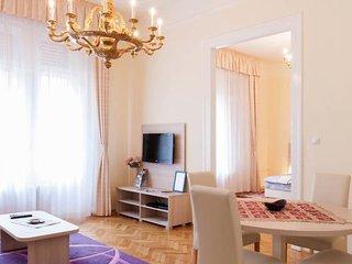 Spacious apartment in city center..váci street