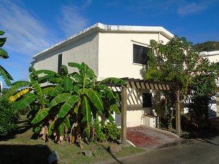 Caribbean 'Dream Villa' Jolly Harbour