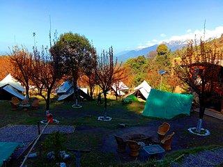 Camp Oak View, Bir Billing