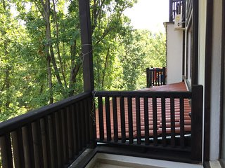 Studio with forest view and spacious balcony