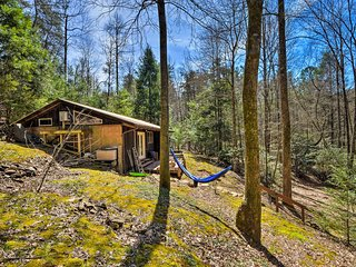 NEW! Cozy & Secluded Cabin - 15 Miles from Ellijay