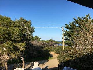 Casa vacanze fronte pineta a pochi passi dal mare
