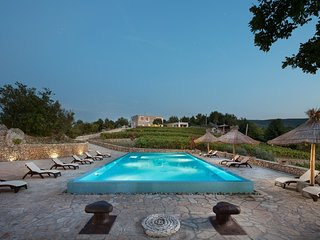 Impressive Villa Stanic Estate, with a Pool