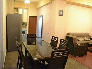 Beautiful and large apartment in Pushkin Street