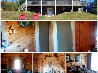 Blue Bear Wilderness Retreat Rentals