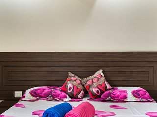 Achla's Oasis in Central Delhi-3 Bed Room House
