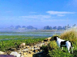 Bungalow con vistas a la Bahia Cadiz
