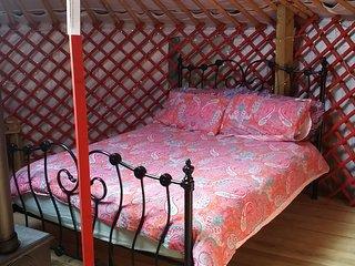 Wych Elm Glamping 'Alder Yurt'
