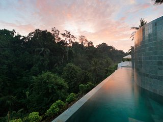 Double Magical Jungle Infinity Pool Hideaway